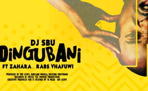 MUSIC SPACES | DJ Sbu new single 'Ndingubani'