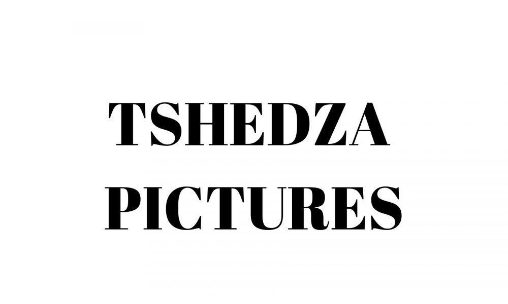 tshedza-pictures-actor-spaces